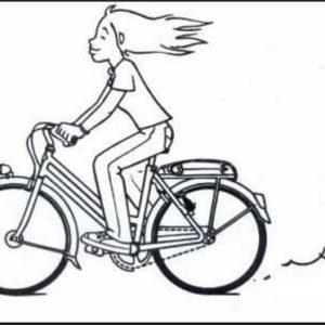 Vélo adulte